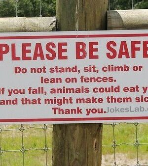 Safe warning: don't make animal sick by feeding yourself