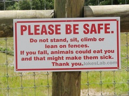 Safe warning: don't make animal sick by feeding yourself