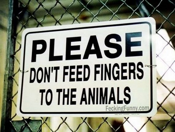 please-dont-feed-your-fingers-to-animals