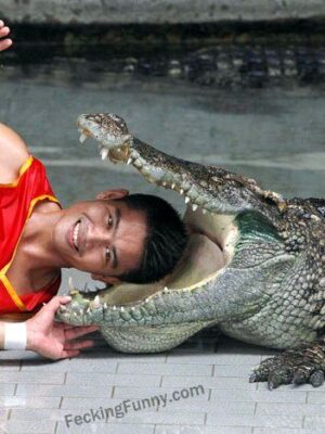 Put your head in the mouth of a crocodile, dare you?