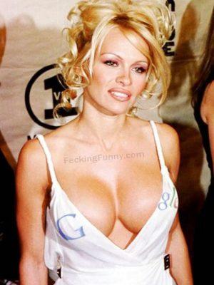 Google boobs, unofficial Google babe