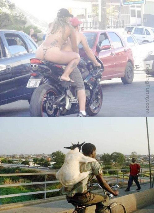 funny-motorbike--first-world-lady-and-third-world-goat