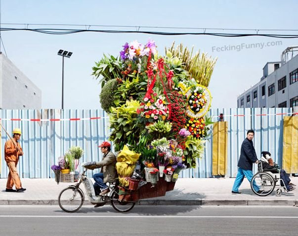 most-romatic-man-tricycle-with-flowers
