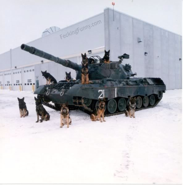 Dogs were deployed to prevent the tank from being stolen