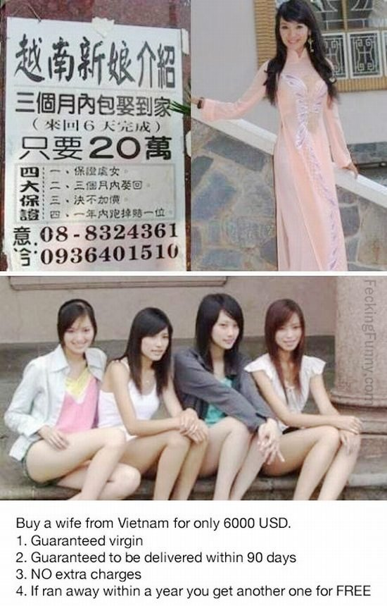 How Taiwanese guys get wife? Buy from Vietnam, with warranty!