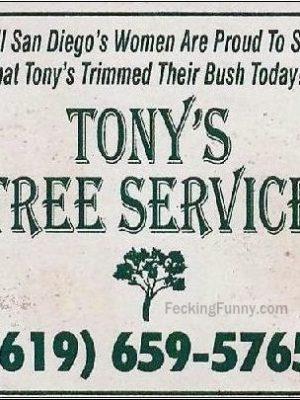 Tony's tree trimming service, including bush