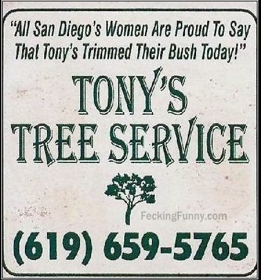 Tony's tree trimming service, including bush