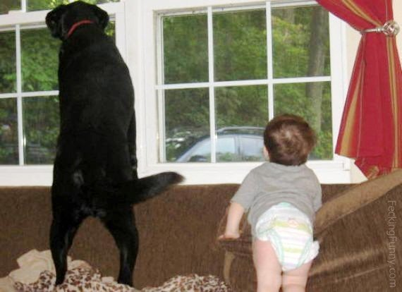 Watch out: baby and dog