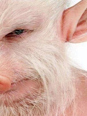 Pig man: for ham or bacon lovers