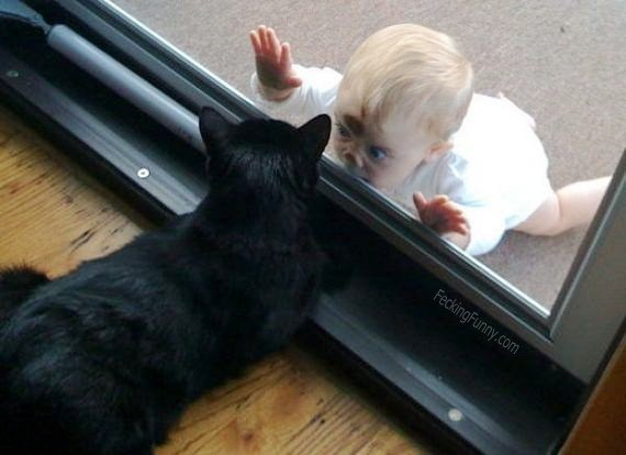 baby-and-cat-hide-and-seek