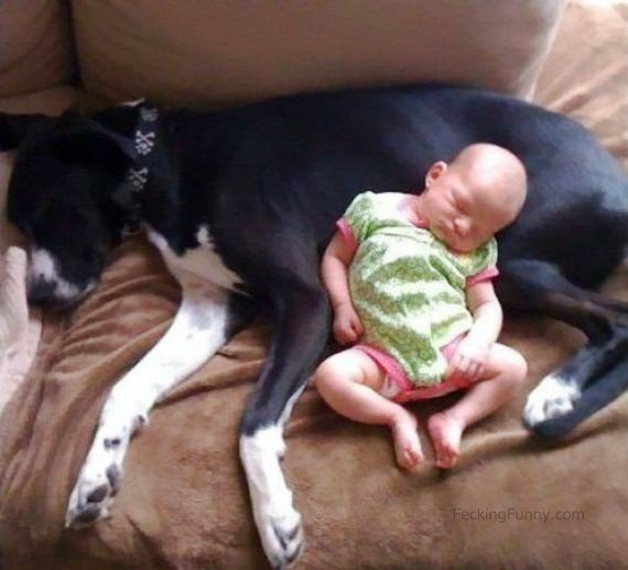 baby-sleeping-with-dog