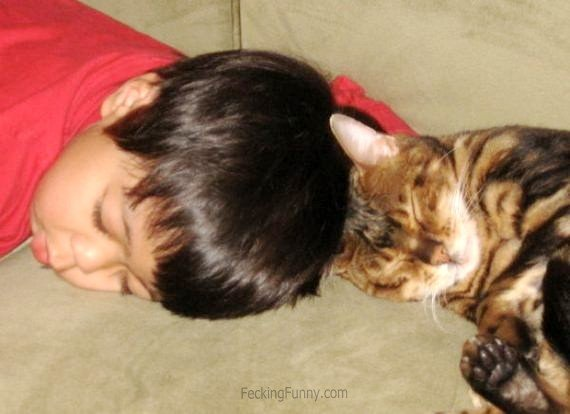 Head-to-head sleeping with cat