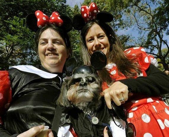 Micky dog