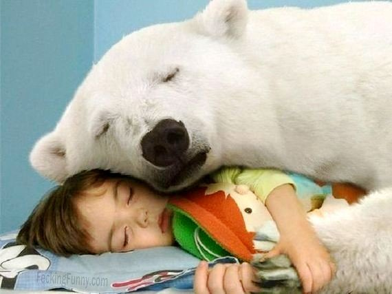 sleeping-buddies-dog-and-kid