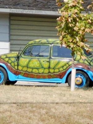 Funny turtle car