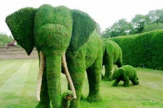 green-elephants