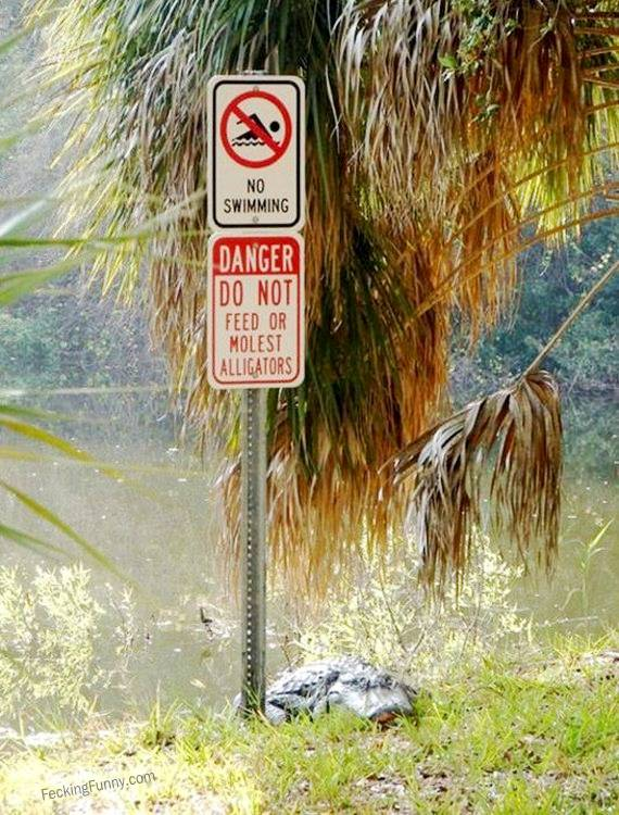 funny-sign-do-not-feed-or-molest-alligators