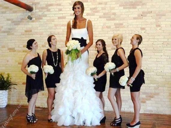 A Really Tall Girl - Bride, Funny, Girl, Picture, Wedding Dress, Woman-2374