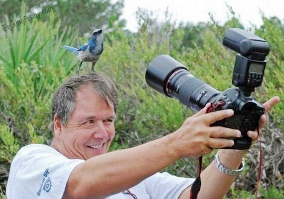 bird-and-photographer