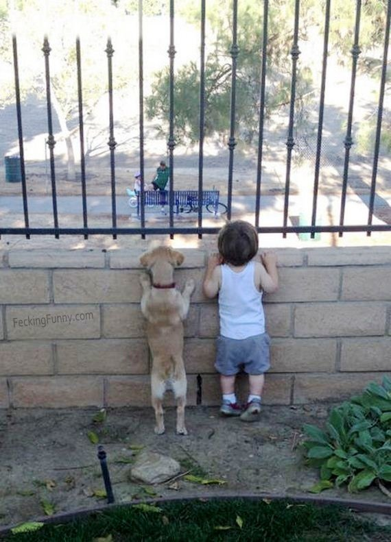funny-dog-and-kid