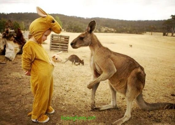Funny kangaroo with child