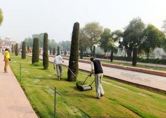 Mowing in India