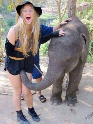 Peevish elephant molesting sexy girl