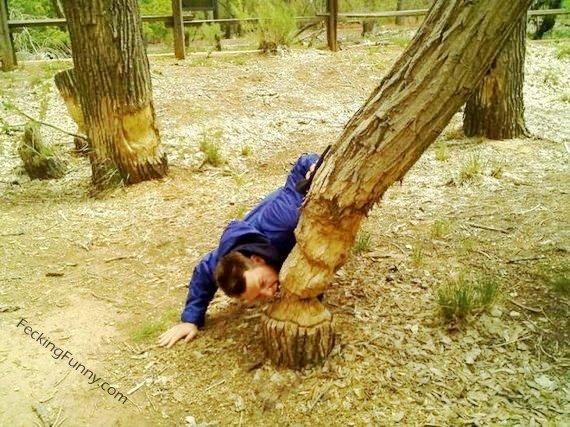 tree eating man