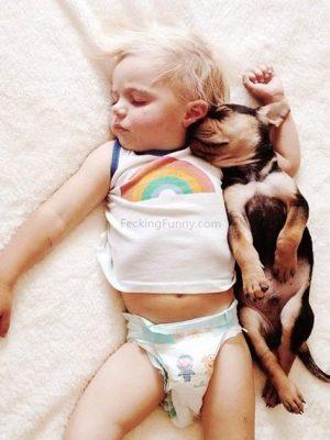 Sleeping boy and dog