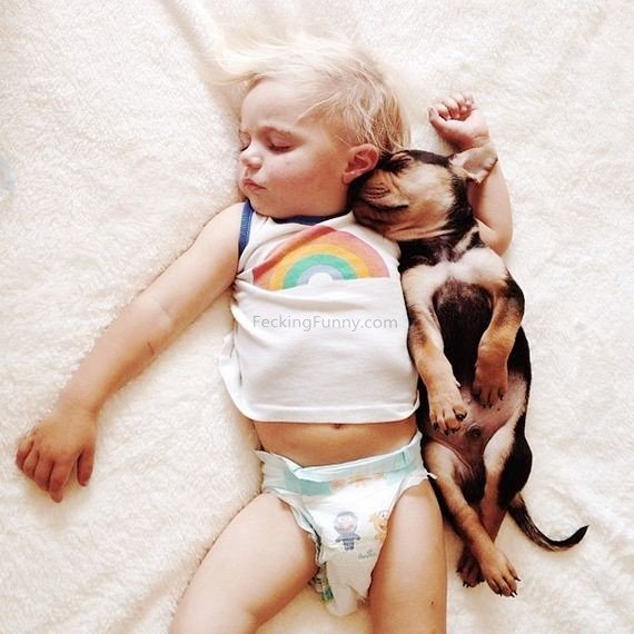 boy-and-dog-sleeping