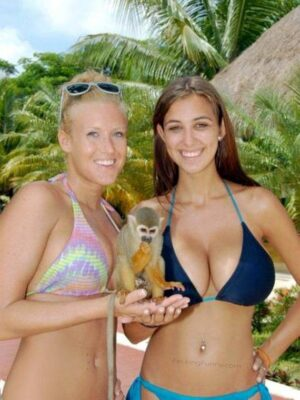 Two busty women and one monkey